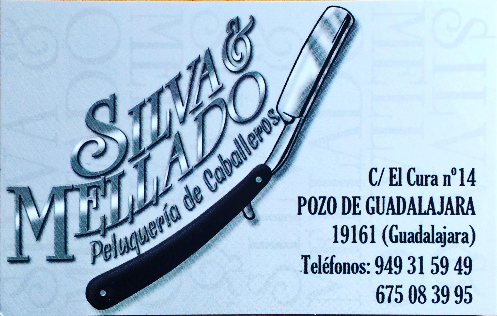 09 Silva&Mellado