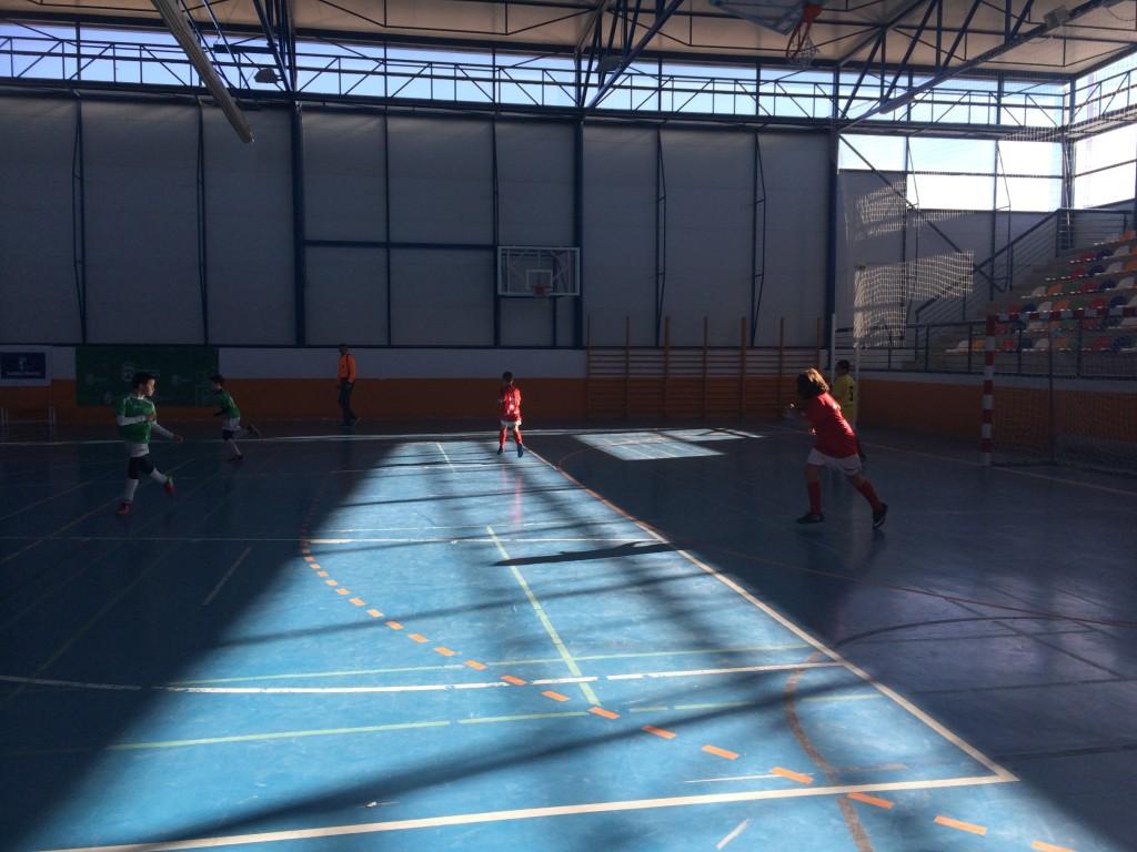 EM Alovera - FS Pozo de Guadalajara alevín 10-1-15