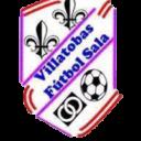 FS Villatobas
