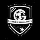 CD Ciudad de Guadalajara FS